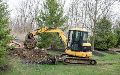 Tree Services in Slidell